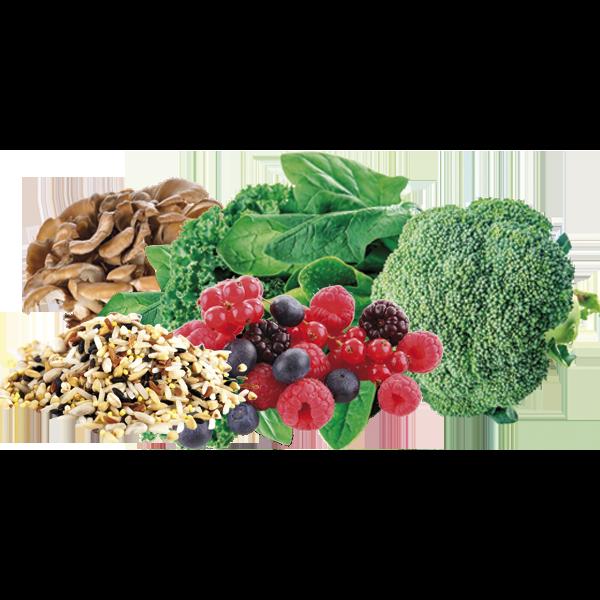 Juvo Slim Natural Raw Meal Reviews