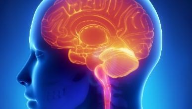 MIND dieet vermindert risico op dementie
