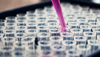 Therapie met probiotica, nieuwe behandeling tegen obesitas.