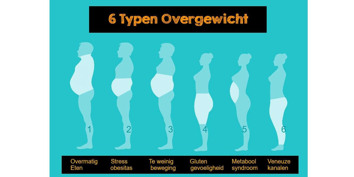 zes vormen van overgewicht