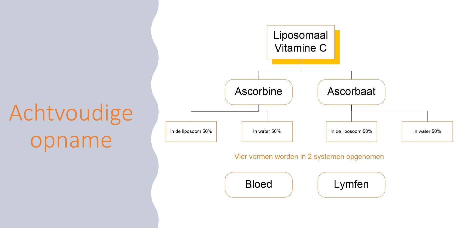 liposomaal vitamine C kopen