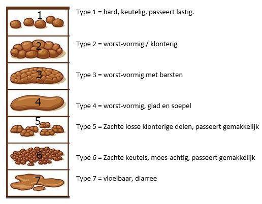 afbeelding poep test bristol stool chart