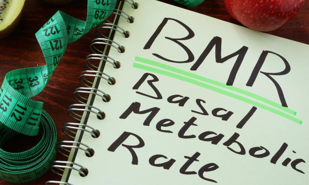 BMI BMR rustmetabolisme afvallen