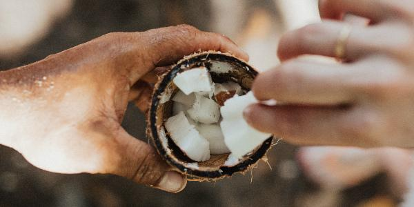 kokosvet gezond of niet? kokosnoot