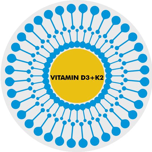 liposomaal vitamine D3 + K2