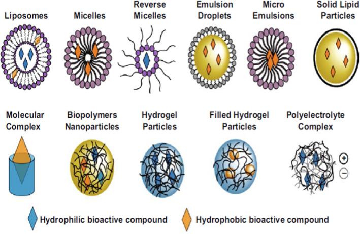 liposomen micellen