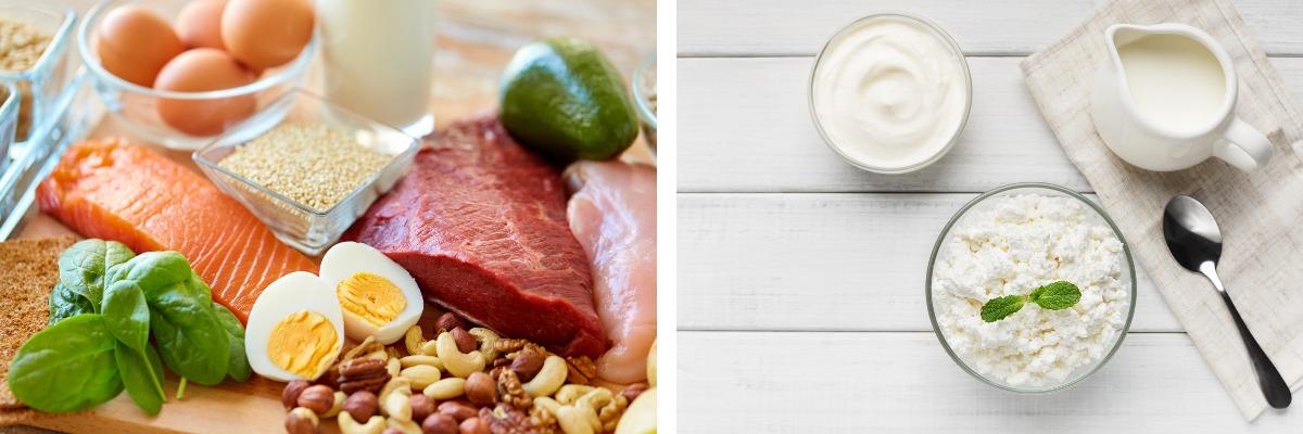 eiwitrijke voeding met veel proteïnen