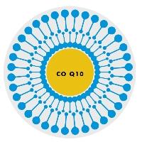 liposomaal co-enzym Q10