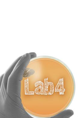 probiotica en darmflora