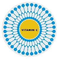 liposomale vitamine C actinovo