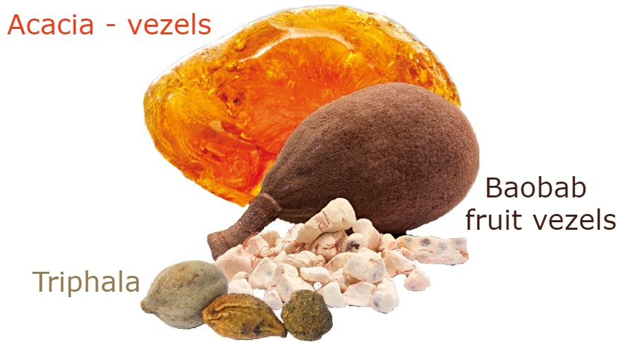 volledige voedingsvezels spijsvertering baobab acacia triphala