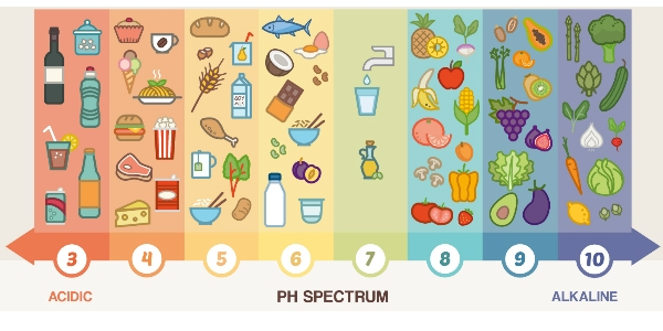 zure voeding ontzurende voeding zuur-base-balans
